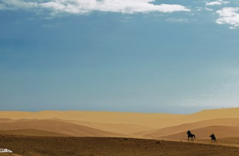 Horses in an expansive dune 370 (photo credit: Israel Weiss)