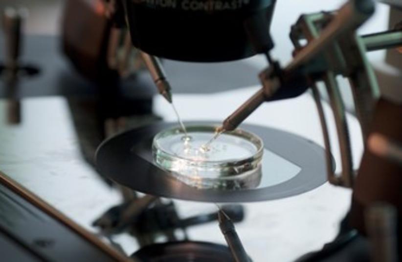 In vitro fertilization 370 (photo credit: REUTERS/Kacper Pempel)
