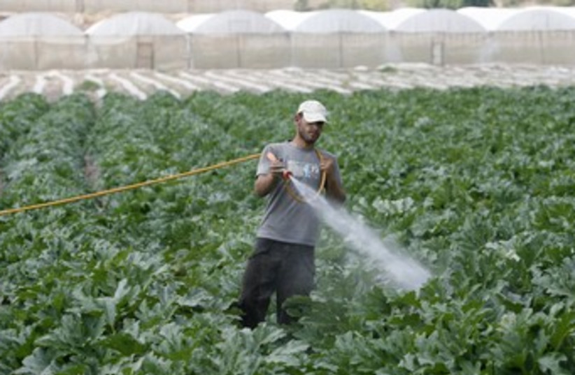 Palestinian farmer sprays pesticides 370 (photo credit: REUTERS/Mohamad Torokman)