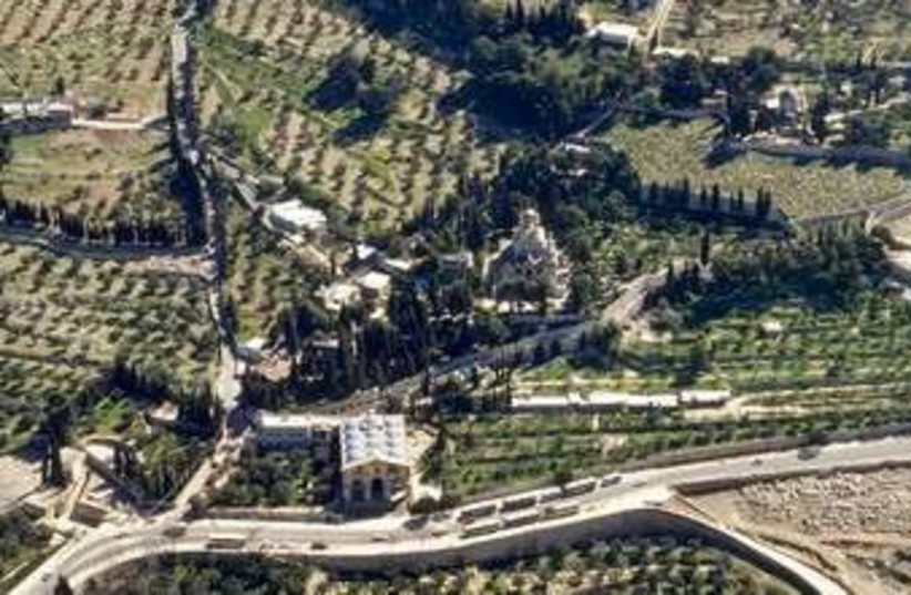 Garden of Gethsemane (photo credit: BiblePlaces.com)
