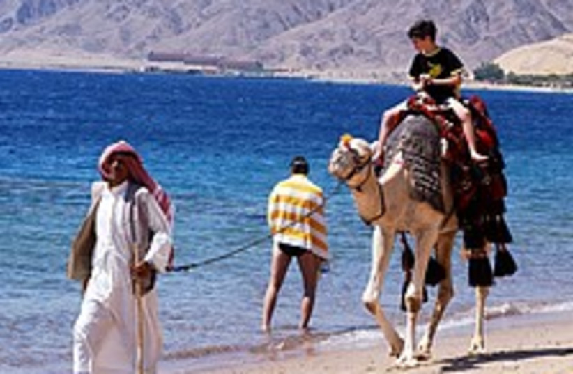 Tourists in sinai 224.88 (photo credit: Ariel Jerozolimski )