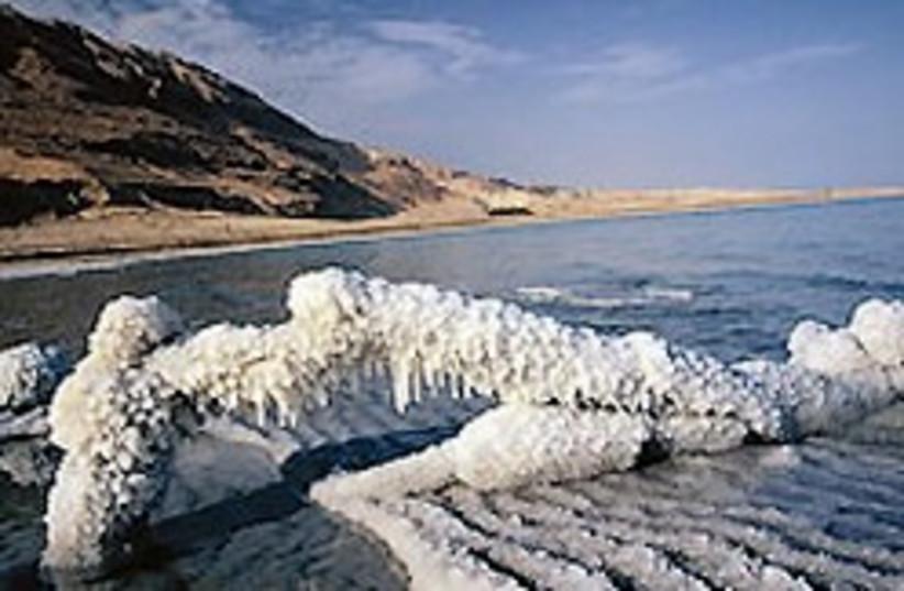 Dead Sea good 88 248 (photo credit: Courtesy)