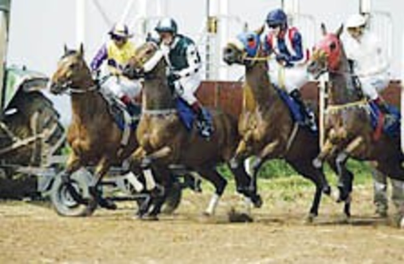 horse racing 224.88 (photo credit: Courtesy )