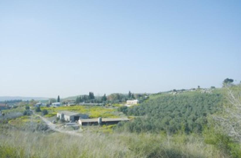 moshav taoz370 (photo credit: Seth J. Frantzman)