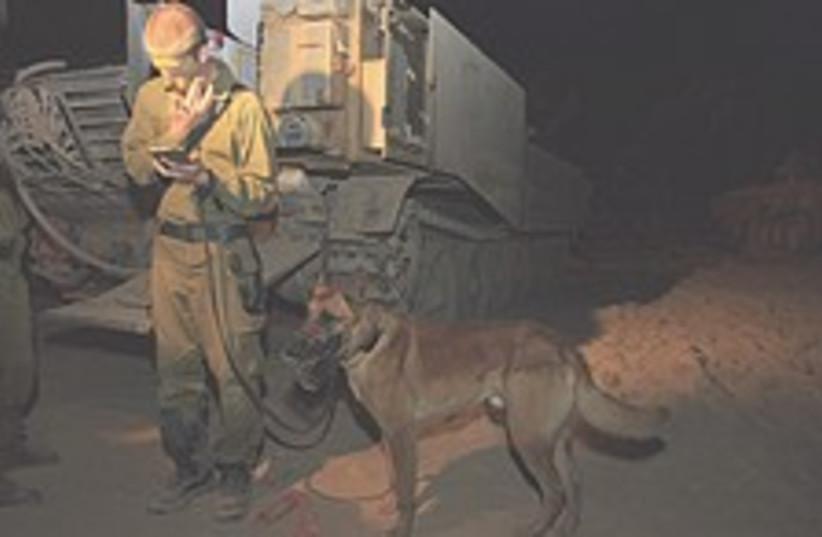 IDF dog 224.88 (photo credit: AP)