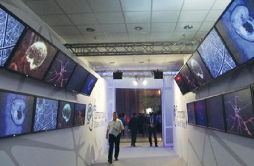 brain science exhibit 370 (photo credit: Judy Siegel-Itzkovich)