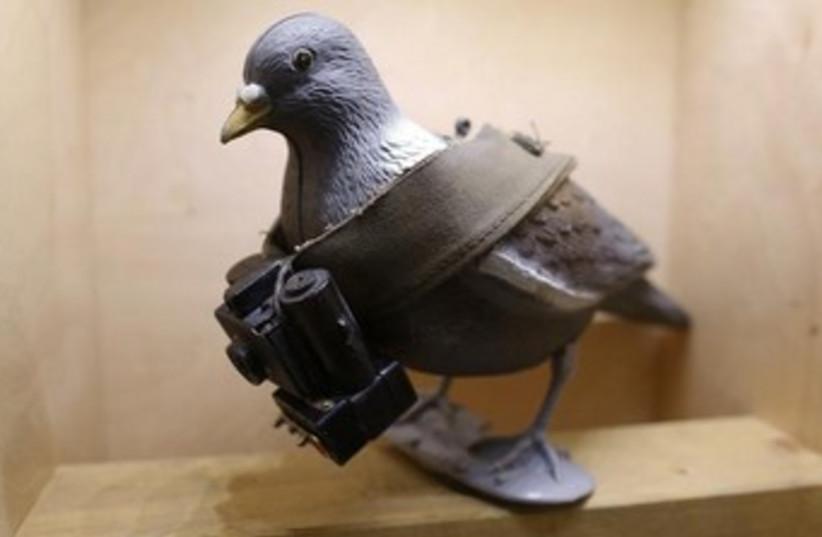 Spy bird, fake bird with a camera 370  (photo credit: REUTERS)