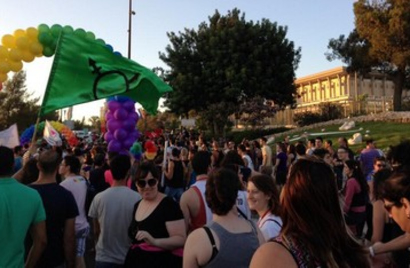 Gay Pride Jerusalem by Knesset 390 (photo credit: NIV ELIS)