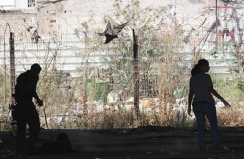 Decapitation crime scene 370 1 (photo credit: Ben Hartman)
