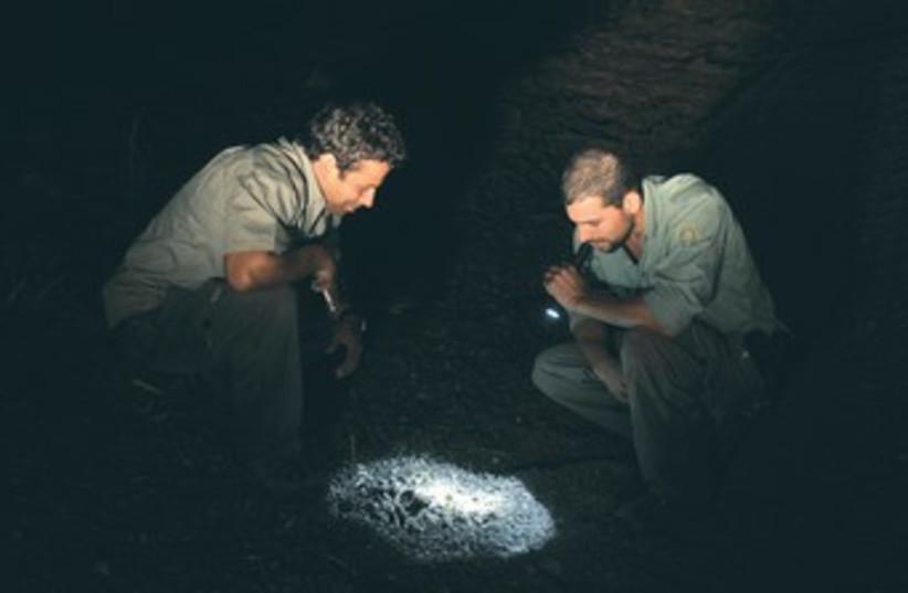 Park rangers inspect torch light 370 (photo credit: Ben Hartman)