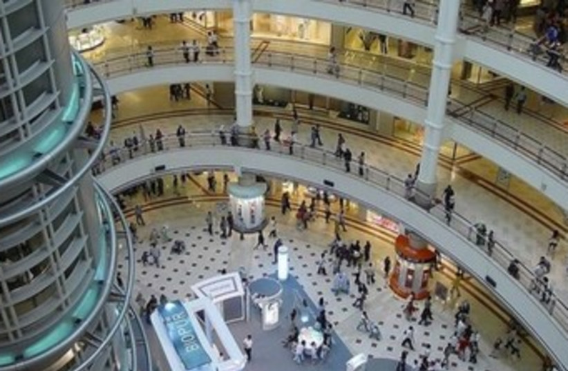 Picture of Malaysian mall on IDF blog 370 (photo credit: IDF blog)