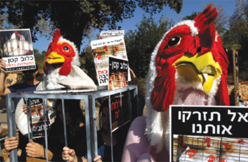 Animal rights protest israel 521 (photo credit: Reuters)