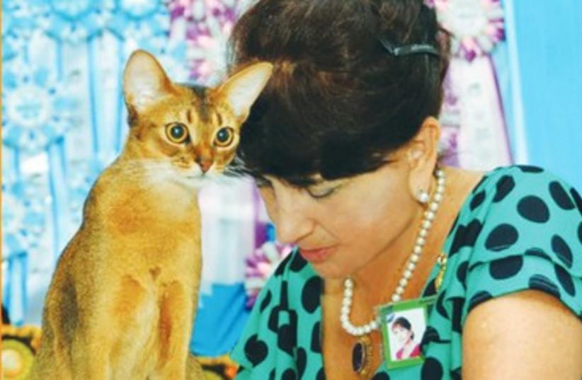 Royal Cat Club (photo credit: Courtesy)