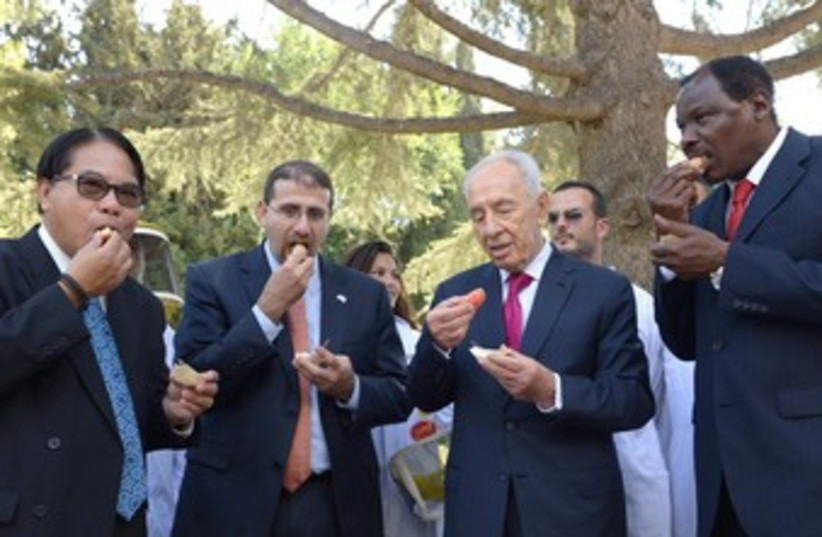 President Shimon Peres with envoys at Rosh Hashana ceremony  (photo credit: Mark Neiman/GPO)