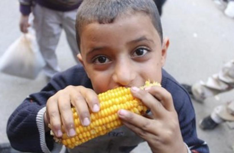 Syrian boy eats corn in Aleppo 370 (photo credit: REUTERS)