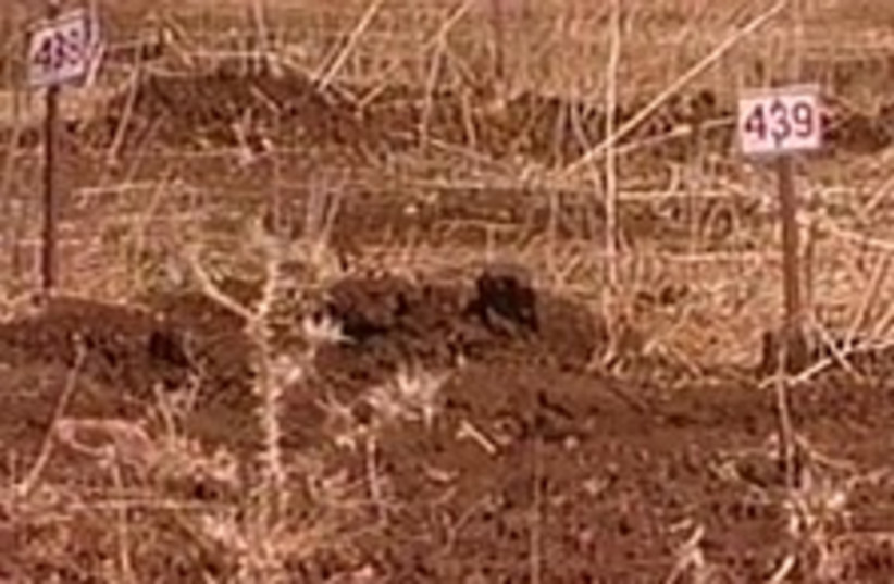 cemetery enemy bodies (photo credit: Channel 1)