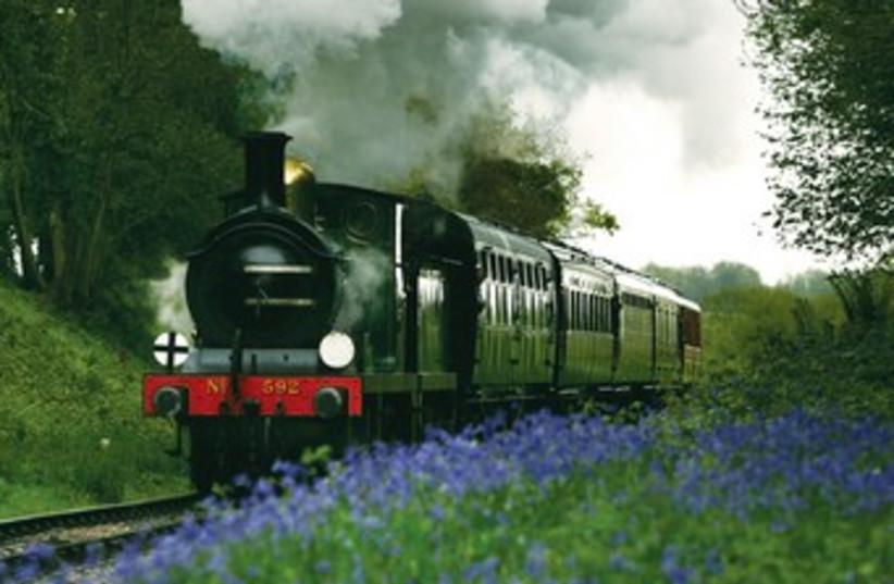Train model in green pasture 370 (photo credit: REUTERS)