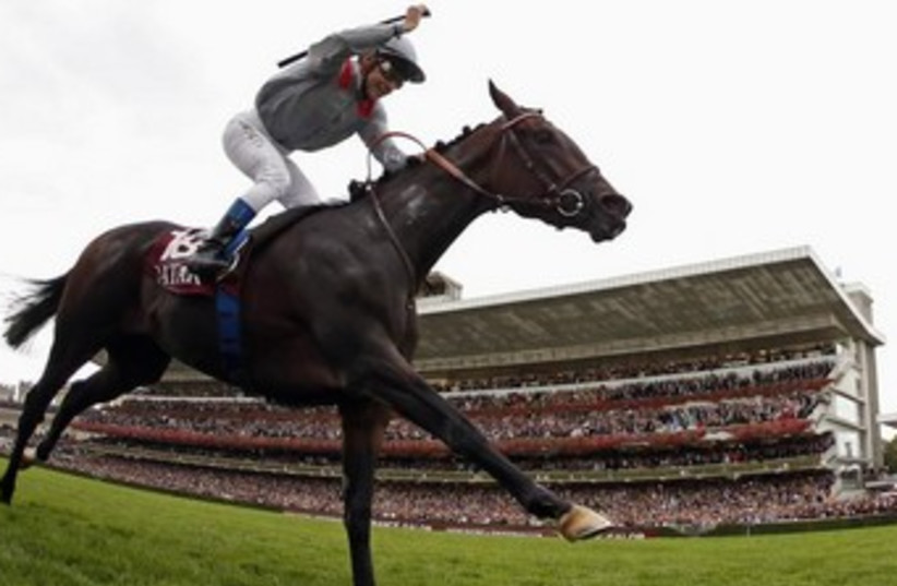 Horse racing in France 370 (photo credit: REUTERS)
