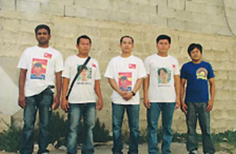 Burmese TA 88 224 (photo credit: Tamar Dressler)