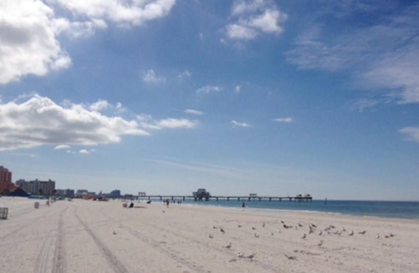 Tampa 370 (photo credit: Ben Franks)