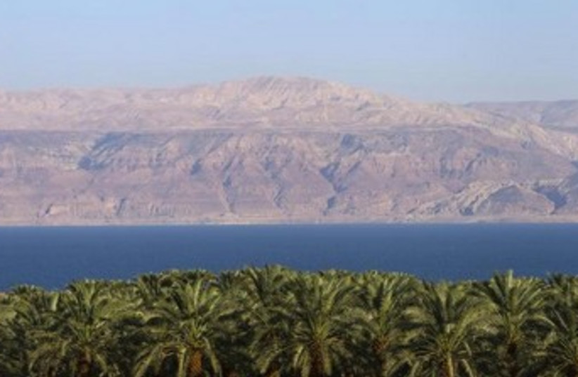 Dead Sea with palm trees 370 (photo credit: REUTERS)