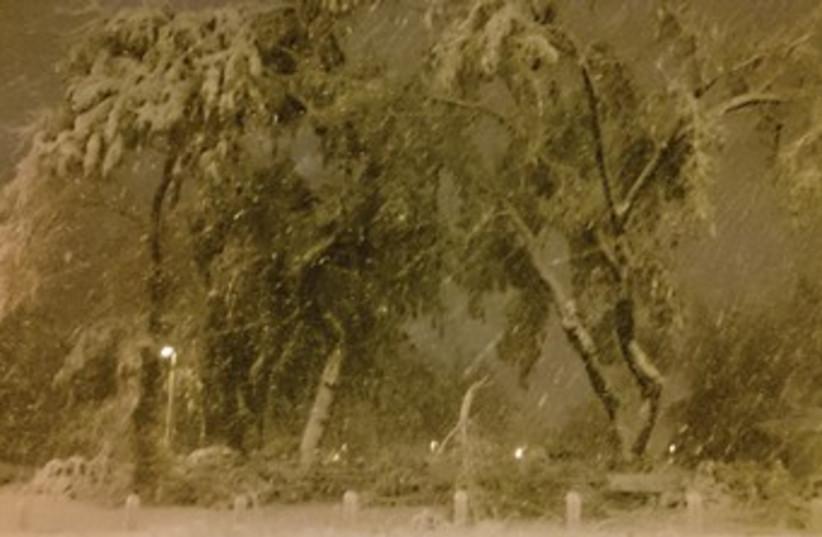 Snowy Jerusalem 370 (photo credit: Ilan Evyatar)