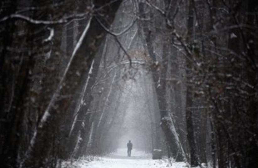 A man walks through a forest in western Ukraine. (photo credit: Reuters)