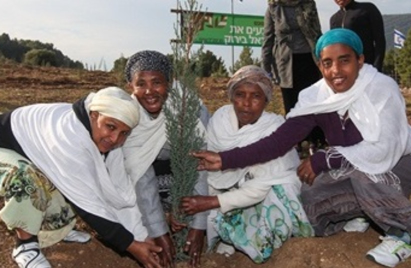 Ethiopian Immigrants Plant Roots in Israel-1 (photo credit: KKL-JNF)