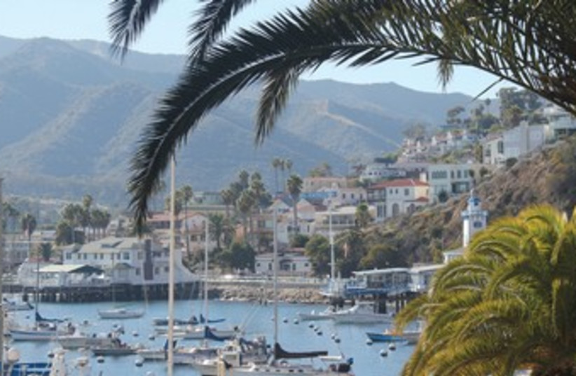 PALMS FRAME a romantic view of the Avalon harbor on Catalina Island.  (photo credit: GEORGE MEDOVOY)