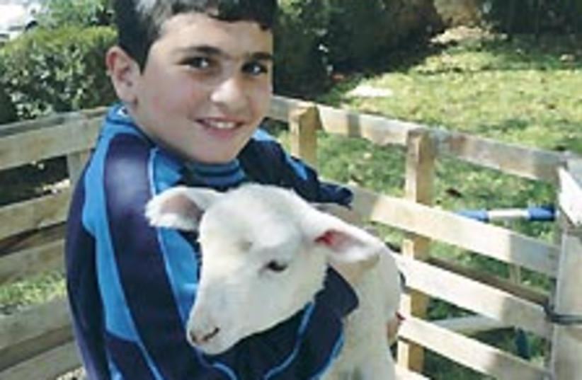 sderot animal farm (photo credit: Courtesy)
