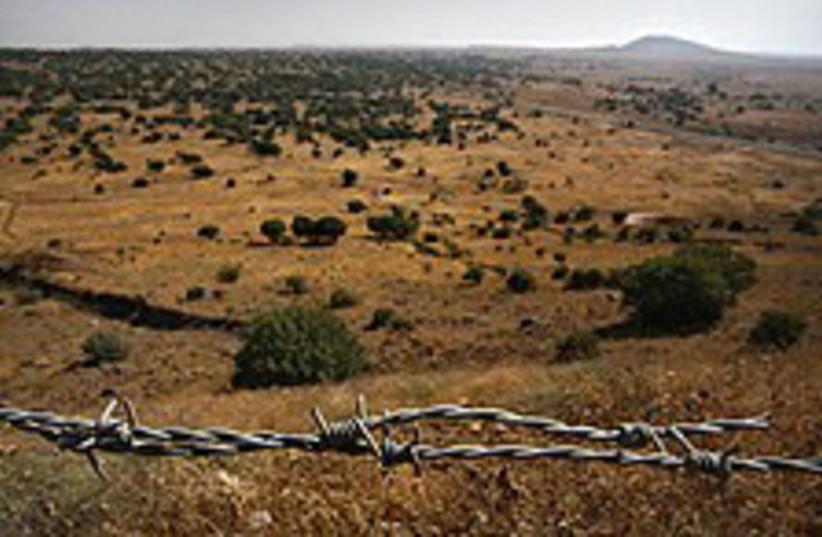 Golan (photo credit: AP)