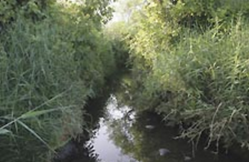 Zaki river 224.88 (photo credit: Shmuel Br-Am)