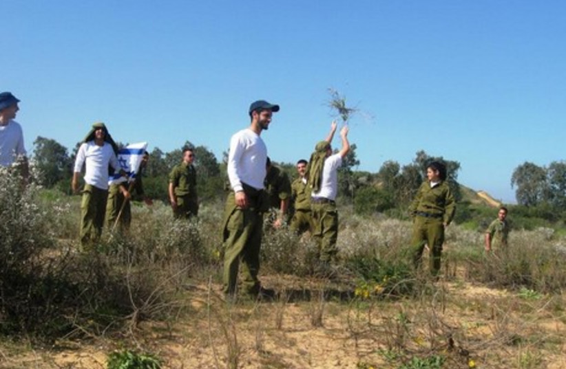 Soldiers participate in environmental project (photo credit: SPNI)