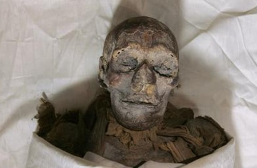 Mummy at museum in Cairo, 2007 (photo credit: REUTERS)