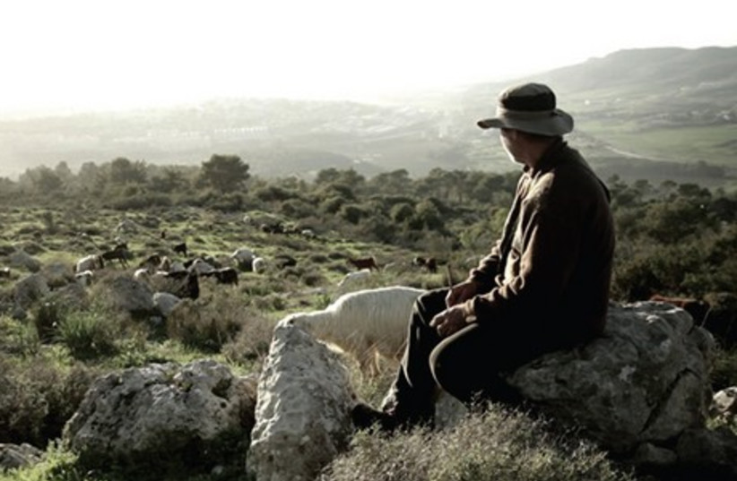Avshi Yaaran on his goat farm in the film 'Four Variations on Detachment.' Inset: director Ohad Milstein. (photo credit: OHAD MILSTEIN)