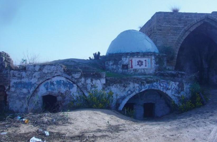 Nabi Rubin near Palmachim (photo credit: SETH J. FRANTZMAN)