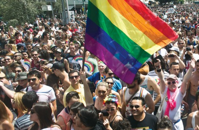 Thousands of people march in the 2013 Gay Pride parade in Tel Aviv. (photo credit: REUTERS)