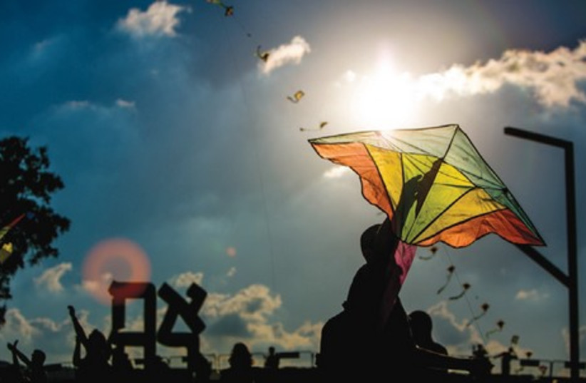 Kite-flying in the Art Garden (weather permitting), and encounters with professional kite-flyers (photo credit: Courtesy)