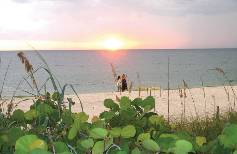 Naples Florida A Little Corner Of Paradise The