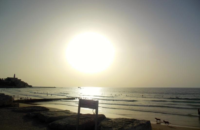 Jaffa beach (photo credit: ARIEL COHEN)
