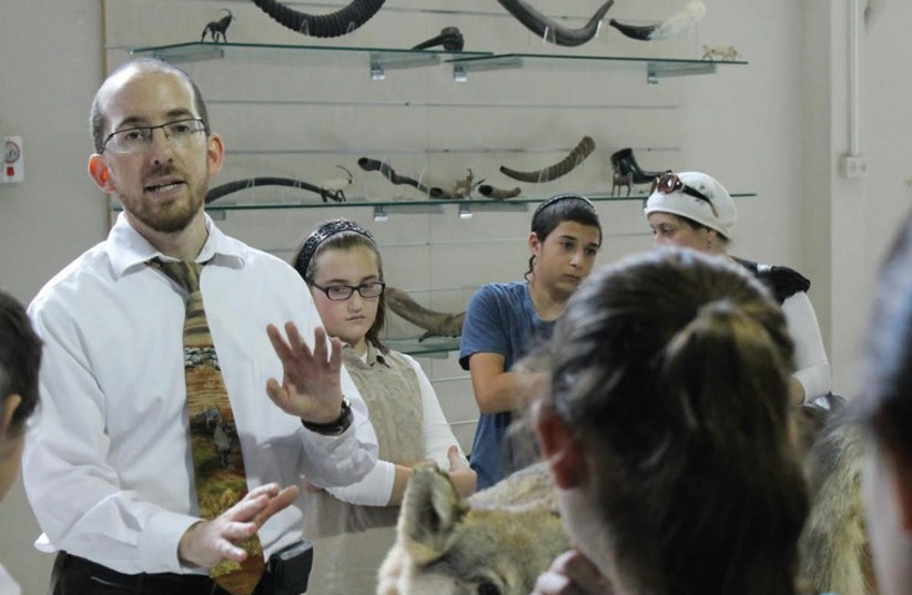 The 'Zoo Rabbi' Natan Slifkin stands in front of the shofar exhibit during a tour of his new Biblical Museum of Natural History. (photo credit: SAM SOKOL)