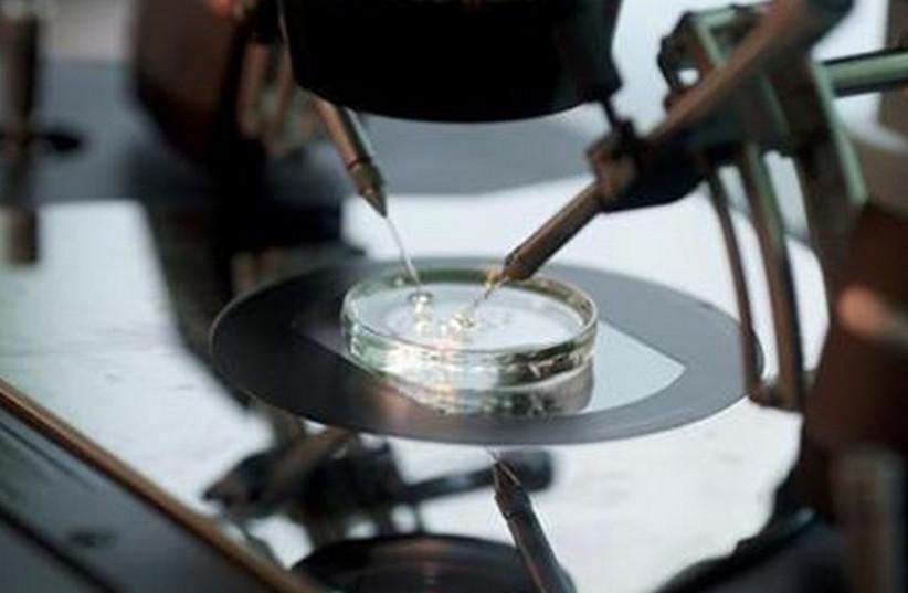 Petri dish [Illustrative] (photo credit: REUTERS)