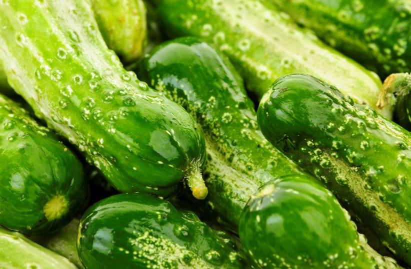 Cucumbers  (photo credit: INGIMAGE)