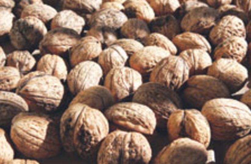 walnuts 88 224 (photo credit: Courtesy )