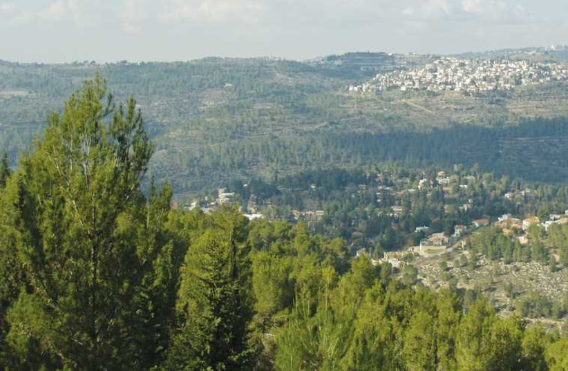 A view of the Jerusalem Forest from Yad Vashem. (photo credit: Wikimedia Commons)