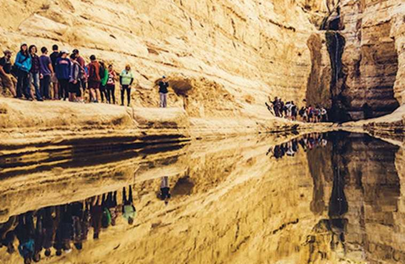 A GROUP of North Americans pass Ein Avdat in the Negev Desert during last month's inaugural Taglit-Birthright Israel Extreme Outdoors Tour (photo credit: TAGLIT-BIRTHRIGHT)