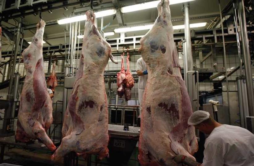 Meat (illustrative). (photo credit: REUTERS)