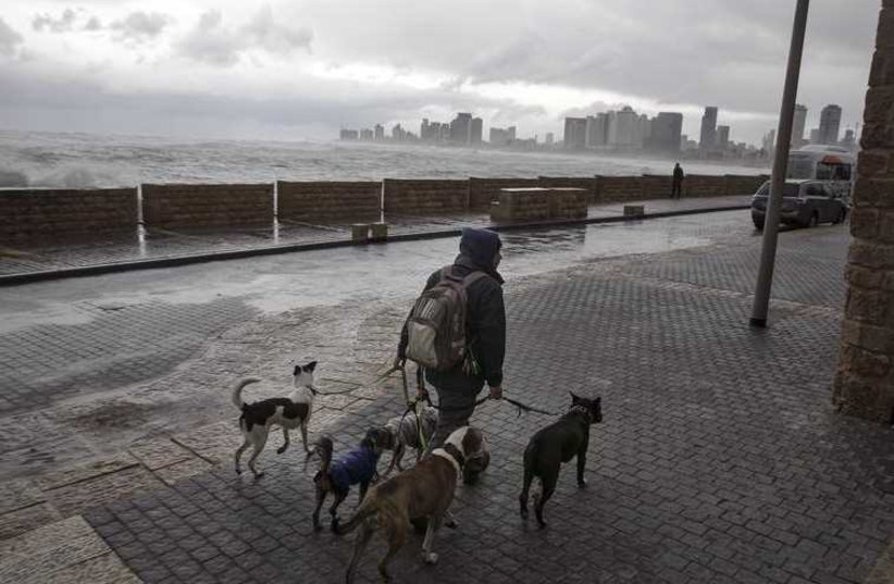 Stormy weather in Tel Aviv [File] (photo credit: REUTERS)