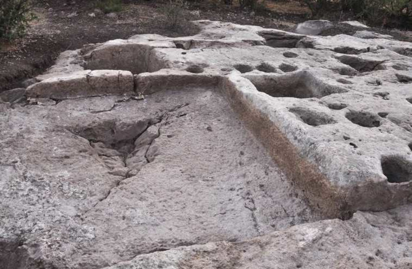 The treading floor and winery complex after excavation (photo credit: DR. NORMA FRANKLIN)