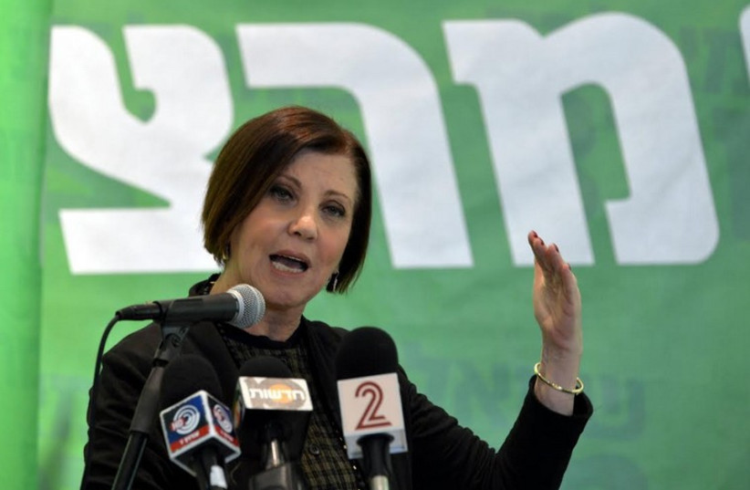 Meretz leader Zehava Gal-On presenting the party's diplomatic platform (photo credit: MERETZ)